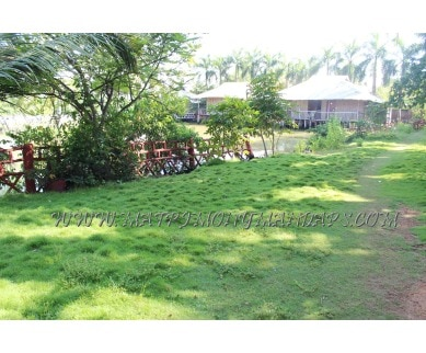 Explore Country Club Rock Springs - Open Lawn in Vypin, Kochi - Open lawn
