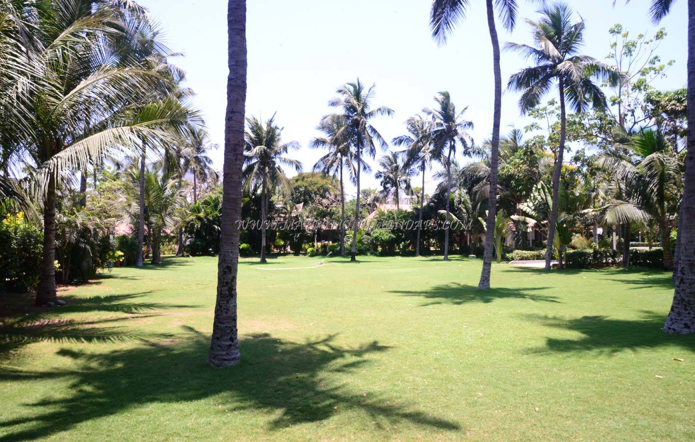 Green Meadows Resort - Open Lawn