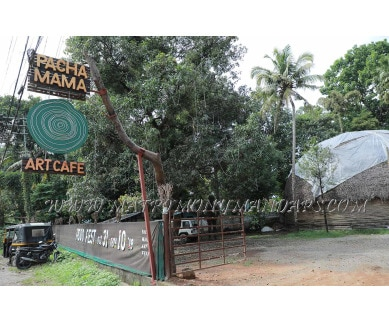 Find the availability of Pachamama Art Cafe in Aluva, Kochi and avail the special offers